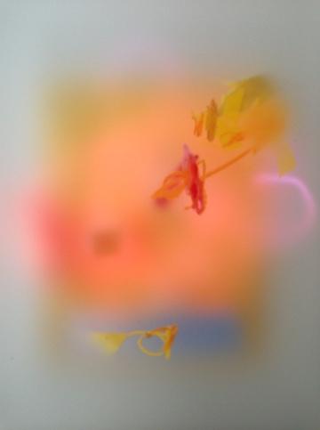 Amy Gadney, Palette 1, 2014